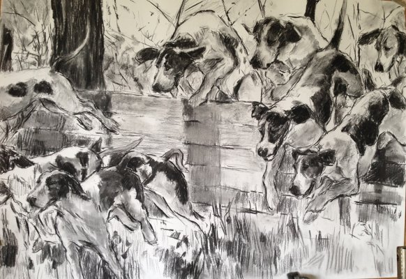 Foxhounds on the Scent 2015, Charcoal on Paper - Copy.JPG